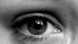 پژوهشگران علم عصب شناسی: اشک ریختن در اوج احساسات، پدیده تکاملی ویژه انسان است