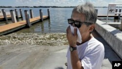 Alex Kuizon covers his face as he stands near dead fish at a boat ramp in Bradenton Beach, Fla., Aug. 6, 2018.