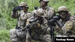 한국 해군 1함대 3특전대대(UDT/SEAL) 특수부대원들이 24일 을지프리덤가디언(UFG) 연습의 하나로 강원 동해시와 양양군 일원에서 적진에 침투해 적 미사일 이동 발사 차량을 탐지해 추적, 격멸하는 특수훈련을 하고 있다.