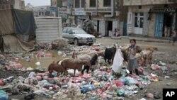 也門戰亂持續多年民不聊生
