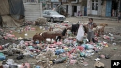 ملگرو ملتونو په یمن کې د لوږې او مړینو خبرداری ورکړی