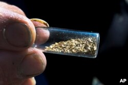 FILE - Chris Hall shows off a vile of gold he's mined from the Wild Ammonoosuc River in Bath, N.H., Sept. 4, 2016. A new generation of gold miners is giving prospecting a try, especially in New England and the Pacific Northwest.