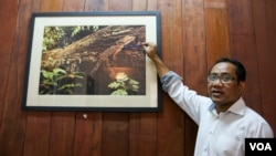 Tuy Sereivathana, country director of Fauna and Flora International Cambodia, describes a new gecko species found in Cardamon Mountain, at his office, in Phnom Penh, on April 22, 2016. (Nov Povleakhena/VOA Khmer)