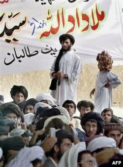 Al-Qoida va Tolibonni nima bog'lab turibdi?