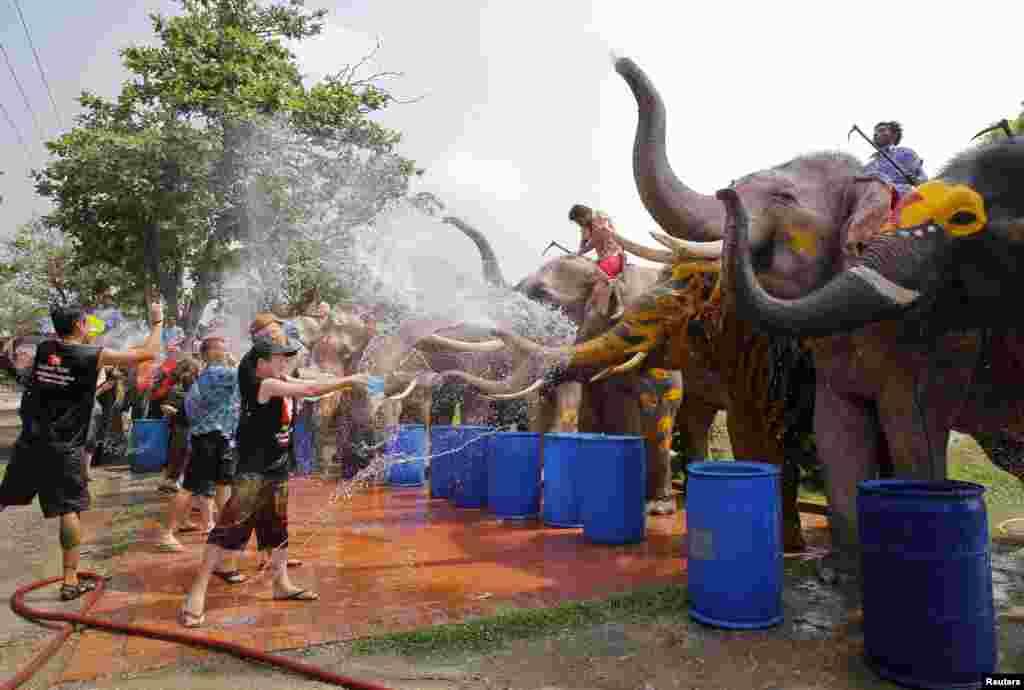 سیاح اس تہوار میں خوب لطف اندوز ہوتے ہیں۔