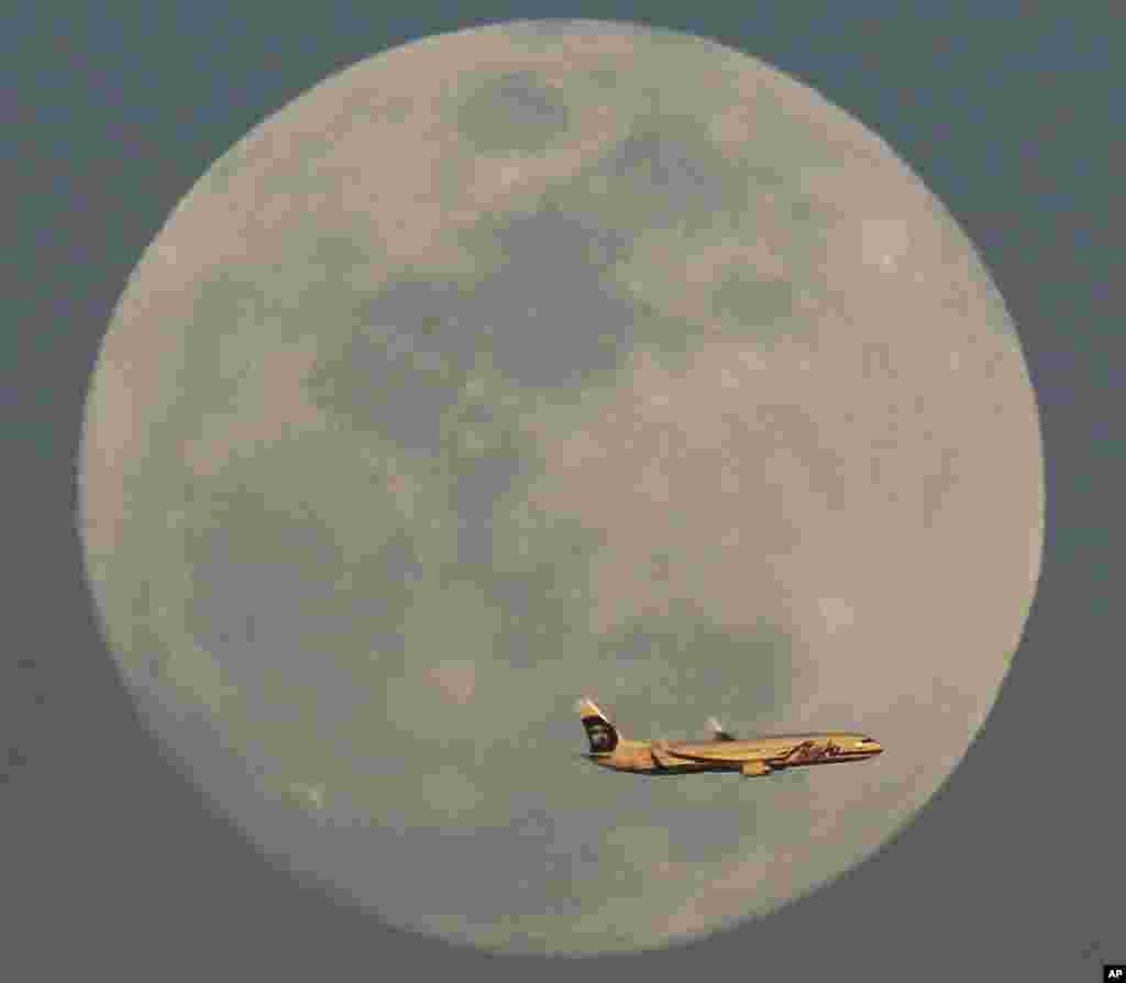 Alaska Airlines uçağı 21 Şubat 2016 da Phoenix Arizona'da yükselen dolunayın önünden geçerken.