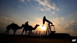 Las señales positivas sobre la reducción de petróleo provienen de los países OPEP y no OPEP.