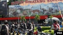 Pemkot Surabaya melibatkan polisi untuk menyelidiki kematian satwa di Kebun Binatang Surabaya, Januari 2014 (Foto: VOA/Petrus Riski)