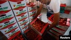 Nga cấm nhập khẩu phần lớn thực phẩm từ các nước phương Tây