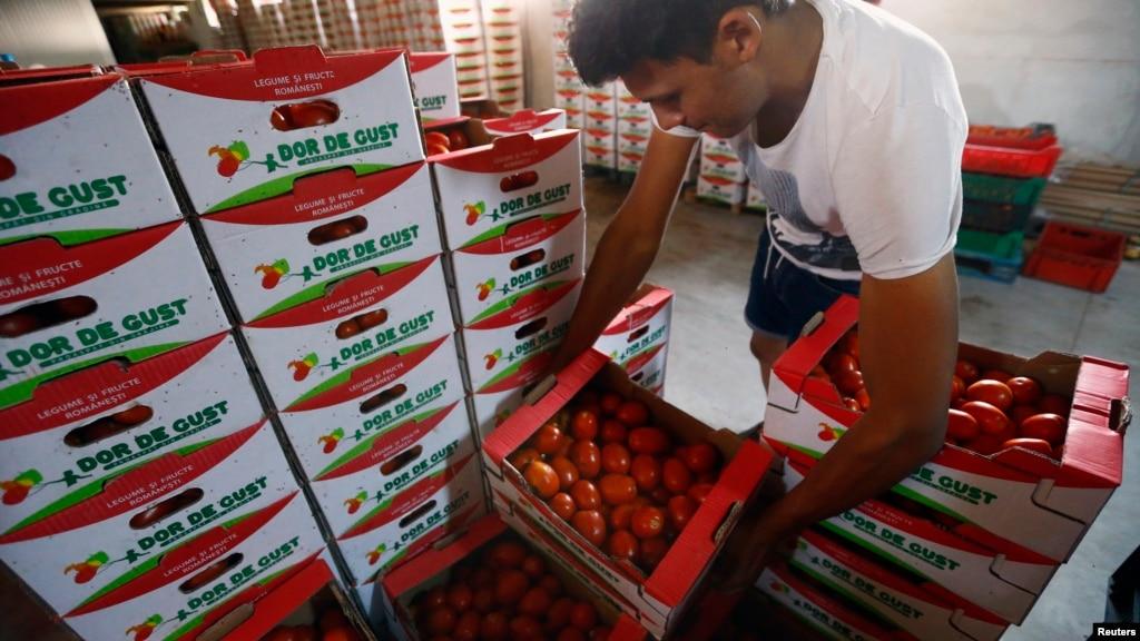 Минсельхоз: Россия усилит контроль за продуктами из Турции