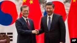 지난 2017년 중국을 방문한 문재인 한국 대통령과 시진핑 중국 국가주석이 베이징 인민대회당에서 열린 서명식에서 악수하고 있다. (자료사진)