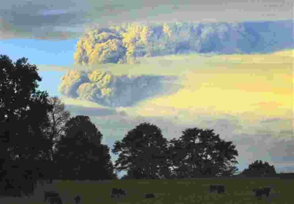 Una columna de humo y cenizas sale del volcán Puyehue, a unos 1.100 kilómetros al sur de Santiago de Chile, 4 de junio 2011. Las autoridades han evacuado a unas 600 personas que viven cerca del volcán.