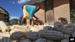 The U.N. Food and Agriculture Organization (FAO) says chronic hunger remains highest in sub-Saharan Africa.