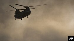 عکس العمل ها در مورد سقوط طیارۀ ناتو