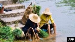 Nehir suyu en az bir hafta kullanılamayacak