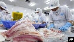Công nhân Việt Nam làm việc tại nhà máy chế biến cá ở Bến Tre