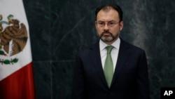 Ministro de Relaciones Exteriores de México, Luis Videgaray.
