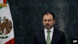 """""""México rechaza, por supuesto, como un tema inamistoso, como un acto hostil la continuación de la construcción de un muro fronterizo entre México y Estados Unidos"""", dijo el Secretario de RR.EE. mexicano Luis Videgaray."""
