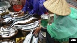 Chợ cá trên đảo Lý Sơn, tỉnh Quảng Ngãi