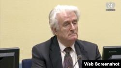Radovan Karadžić za vrijeme statusne konferencije, 10. oktobar 2017.