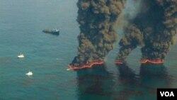 Las tareas de limpieza del Golfo de México siguieron diferentes estrategias.