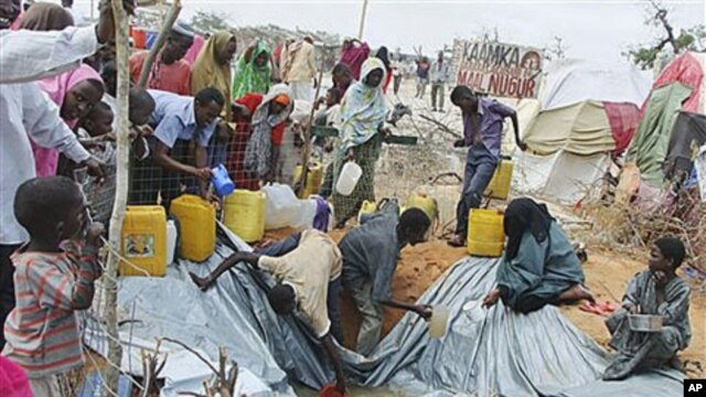 Refugees from southern Somalia fill receptacles with rain water, at a refugee camp in Mogadishu, Somalia, September 5, 2011.