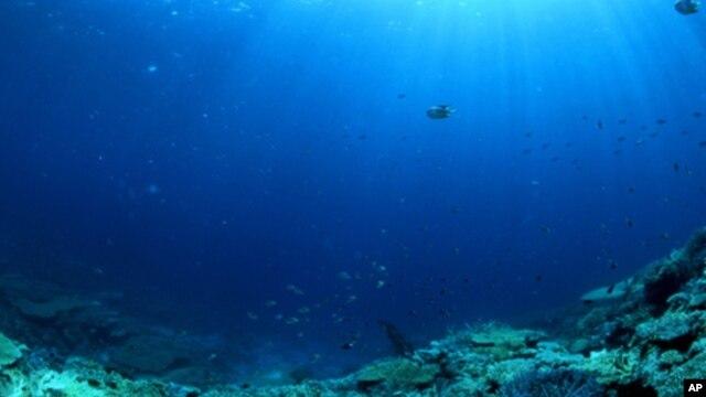 Nuevo mapa oce nico trazado desde el espacio - Fotos fondo del mar ...