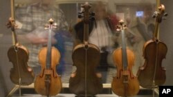 In the 1930s, Gertrude Clarke Whittall donated five stringed instruments, made by famed Cremonese master craftsman Antonio Stradivari, to the Library of Congress.