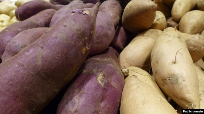 The yam -- both the vegetable and its name -- is of African origin.
