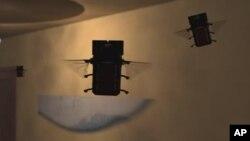 세계 최초 로봇 파리