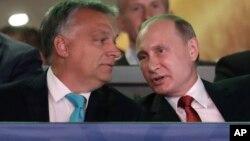 ویکتور اوربان نخست وزیر مجارستان (چپ) در کنار رئیس جمهوری روسیه در محل برگزاری مسابقات بین المللی جودو در بوداپست - مرداد ۱۳۹۶