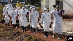 Volunteers, wearing protective gears, are on their way to clean streets covered with toxic red sludge in Hungary, Wednesday, Oct. 13, 2010.