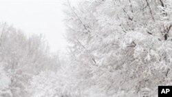 60 πόντοι χιόνι στη Νέα Υόρκη και 46 στη Βοστόνη