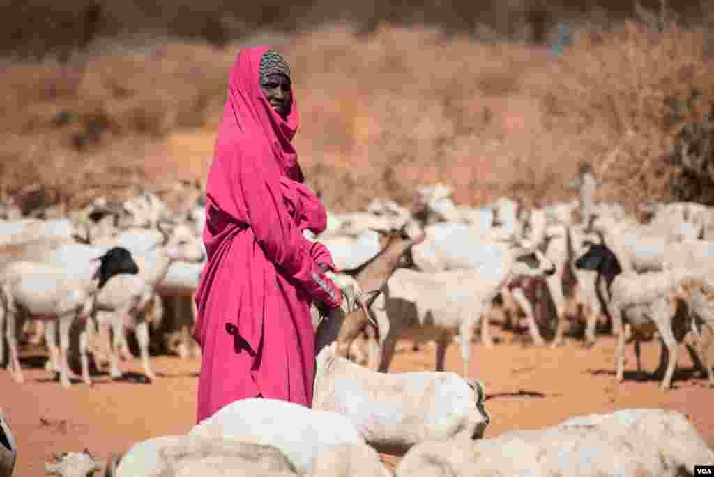 اقوام متحدہ کے مطابق صومالیہ میں جنم لینے والے بحران سے 62 لاکھ افراد کے متاثر ہونے کا خطرہ ہے جو ملک کی نصف آبادی سے زیادہ تعداد ہے۔