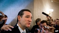 Senator Ted Cruz has made defeat of the health care law a major political issue.