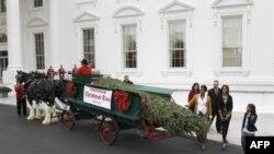 Cây thông cao 5,6 mét đến Tòa Bạch Ốc trên chiếc xe ngựa trong khi một ban nhạc tấu các bản nhạc mừng lễ Giáng Sinh