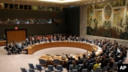 The United Nations Security Council voted on a resolution during a meeting at U.N. headquarters, March 2, 2016.