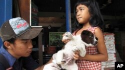 FILE - A veterinarian at the nonprofit Bali Animal Welfare Association gives a rabies shot to a puppy in Kebon Kaja village, Bangli Regency in Bali, Indonesia.