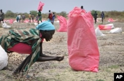 FILE - A woman scoops fallen sorghum grain off the ground after an aerial food drop by the World Food Program (WFP) in the town of Kandak, South Sudan, May 2, 2018.