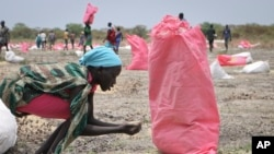FILE - A woman scoops fallen sorghum grain off the ground after an aerial food drop by an aid organization in Kandak, South Sudan, May 2, 2018.