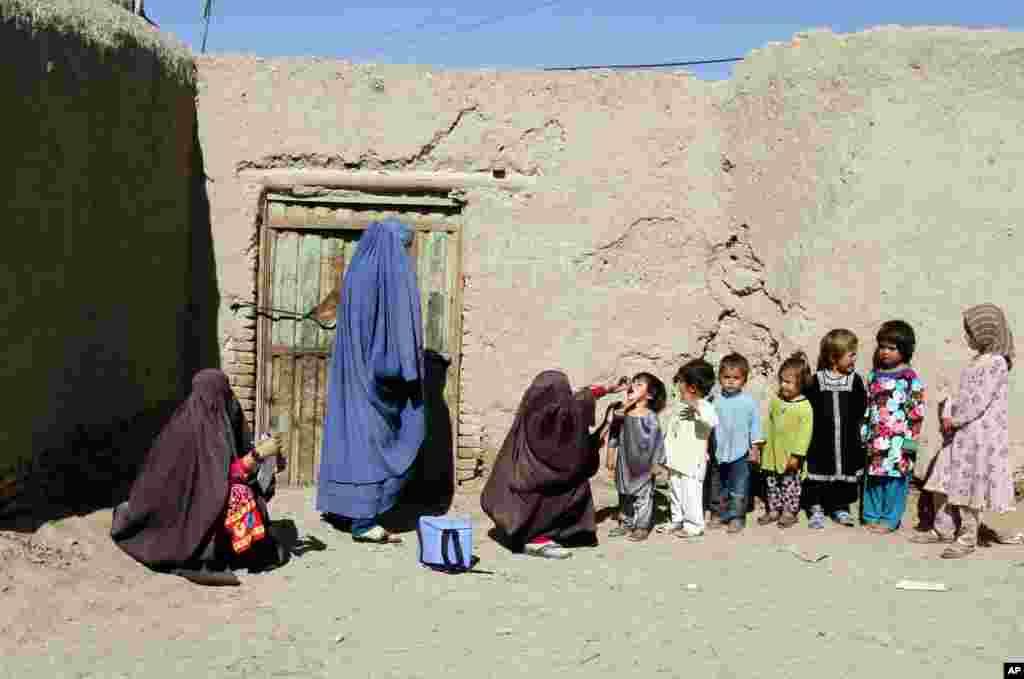 يک امدادگر بهداشتی افغان در کارزار مبارزه با بيماری فلح کودکان به کودکی در قندهار (در جنوب کابل) واکسن میزند.