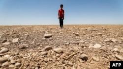 Tampak seorang anak laki laki berjalan di lahan pertanian yang kering di area Saadiya, di sebelah utara Diyala, wilayah timur Irak pada 24 Juni 2021. Kekeringan yang melanda area tersebut merupakan contoh dari dampak perbuhan iklim yang sudah terjadi. (Foto: AFP)