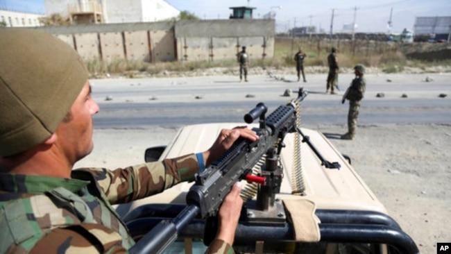 塔利班官员:与美和谈陷入停顿