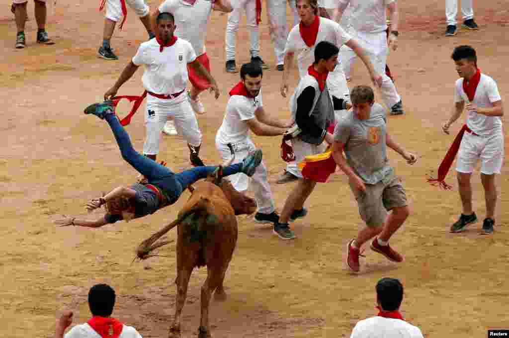 A wild cow charges at a reveler in the bullring following the fifth running of the bulls at the San Fermin festival in Pamplona, Spain.