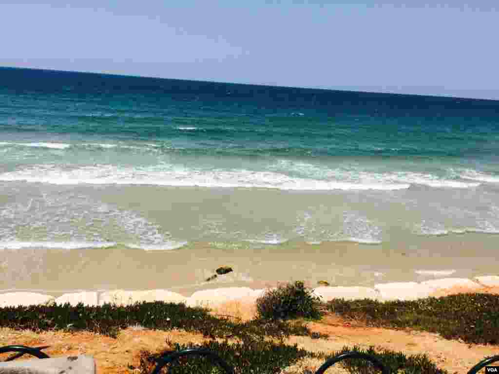 ساحل مدیترانه در تل آویو