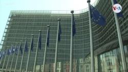 Eurodiputados se pronuncian sobre comicios en Venezuela (Afiliadas)