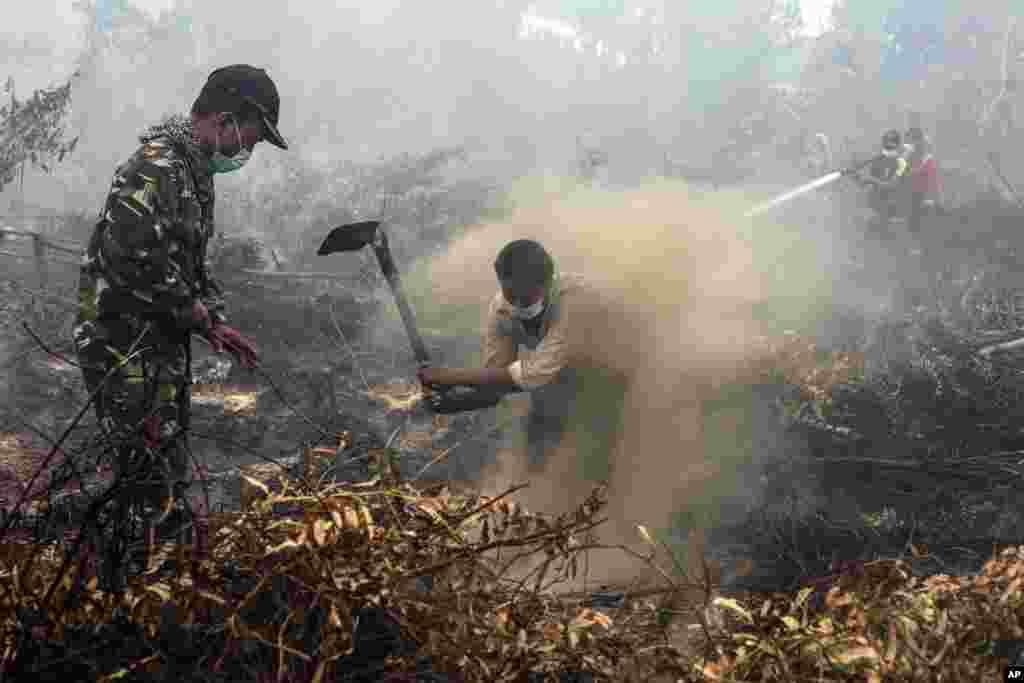 អ្នកភូមិ និងទាហានពន្លត់ភ្លើងឆេះព្រៃនៅលើវាលមួយក្នុងតំបន់ Rimbo Panjang ខេត្ត Riau ប្រទេសឥណ្ឌូនេស៊ី។ ភ្លើងឆេះព្រៃជាច្រើនដែលបណ្តាលមកពីការឆ្ការព្រៃខុសច្បាប់នៅលើកោះស៊ូម៉ាត្រាតែងតែមានផ្សែងខ្មួលខ្មៅរាលដាលទៅប្រទេសជិតខាង។