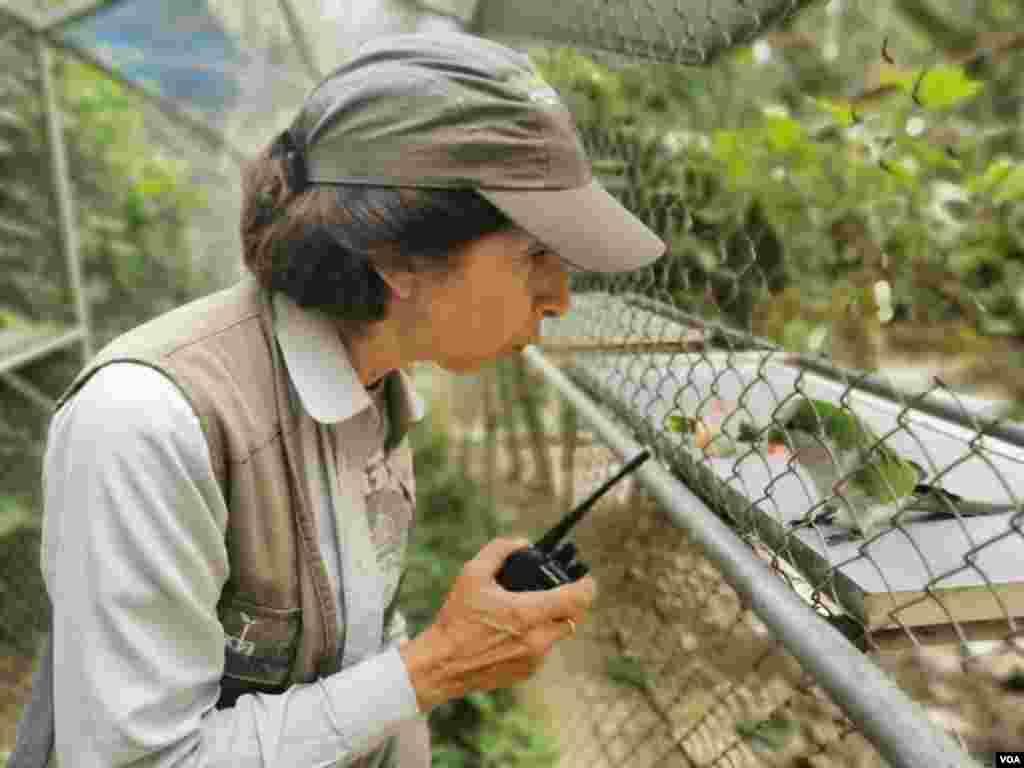 """Vicky Ossio, directora de Senda Verde trabaja para que las personas tengan una relación con la naturaleza para que así puedan cuidarla """"porque no se puede cuidar lo que no conoces""""."""