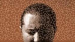 حامد نیک پی و انتشار آلبوم تازه «دیوانه تر»