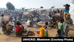 FILE - Thousands of Nigerian refugees, fleeing fighting, have arrived at the Minawao camp in Cameroon, March 3, 2015.
